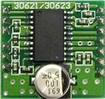 AM306213R1DBGEVB